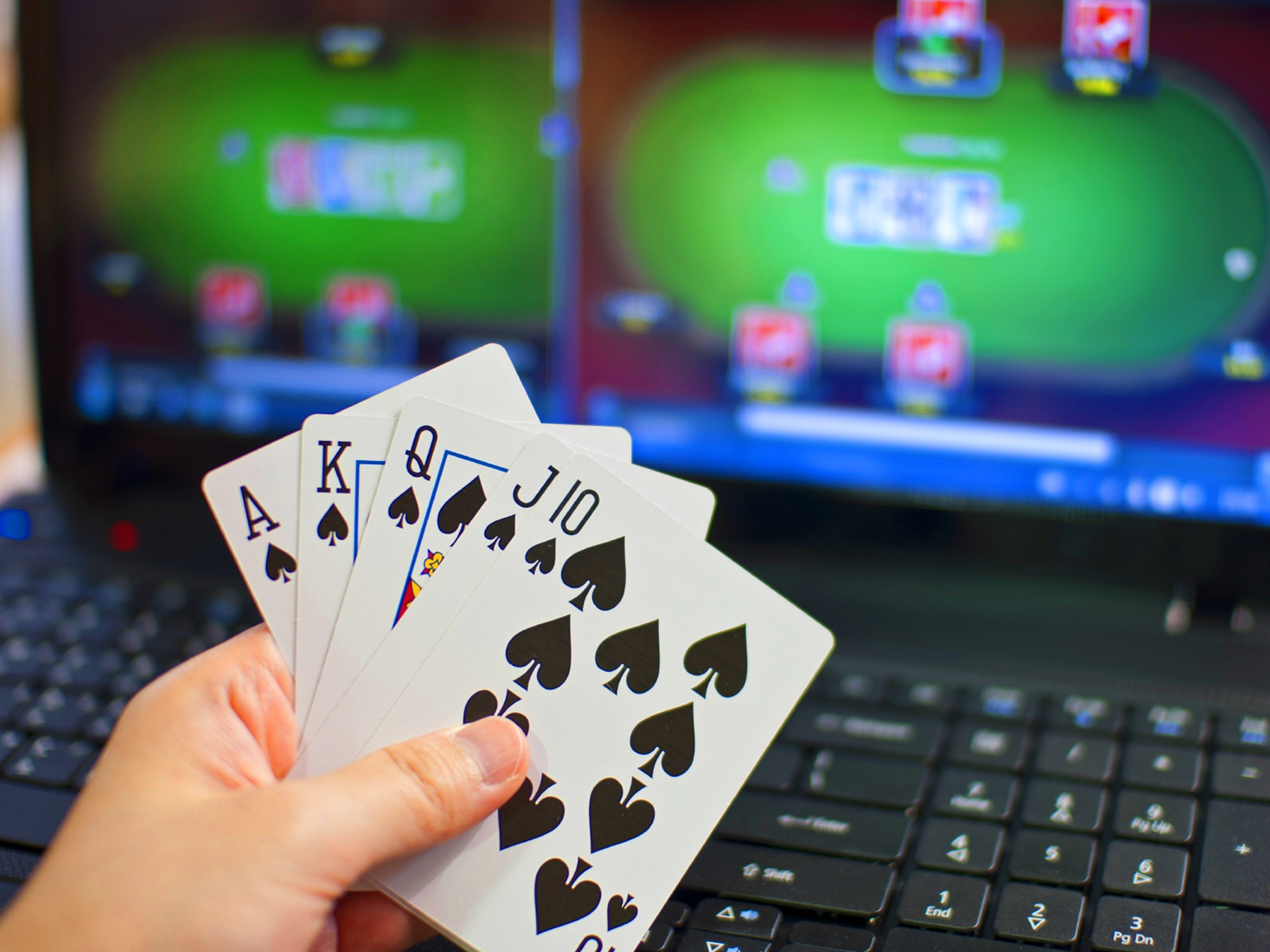 Casinos in New Zealand Things to see and do in New Zealand