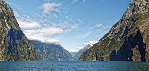 The Best Trips To Take On Your Visit To New Zealand